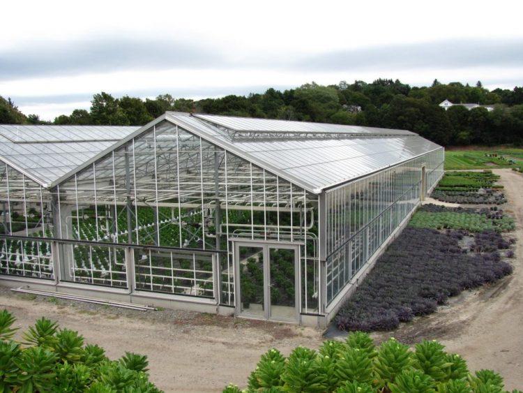 اسکلت انواع گلخانه گلخانه