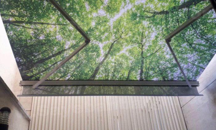 سقف برقی پاسیو