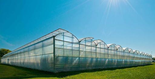 گلخانه پلی کربنات و همه آنچه که باید بدانید