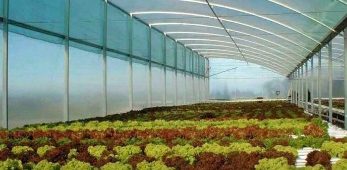 ساخت و اجرای گلخانه پلی کربنات